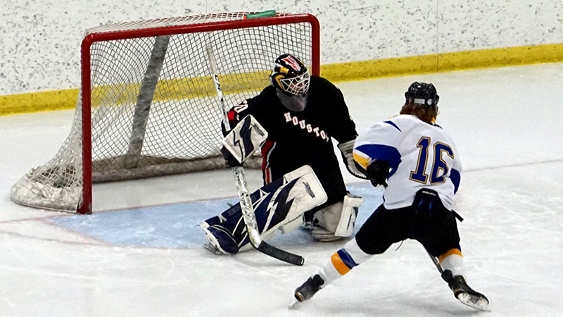 DII Hockey