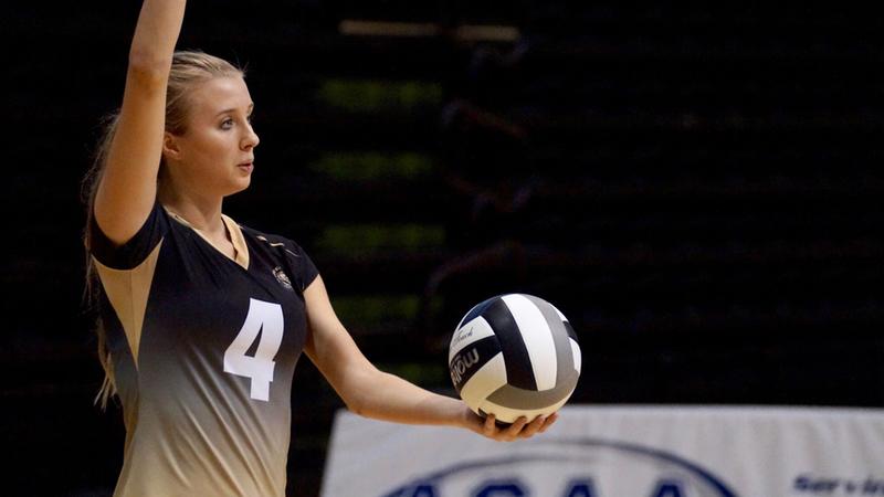 volleyball-photo-4