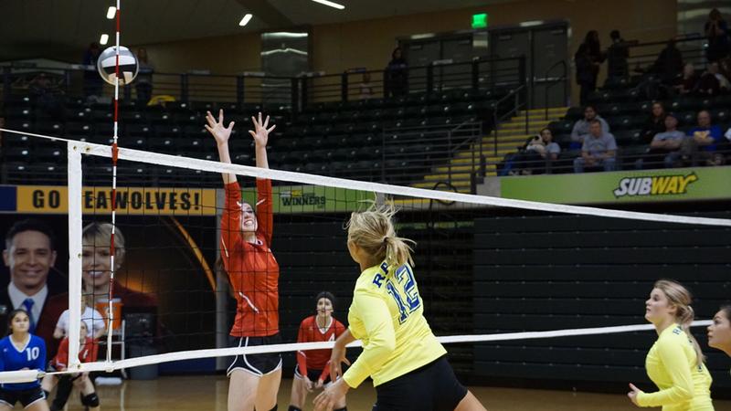 volleyball-photo-6